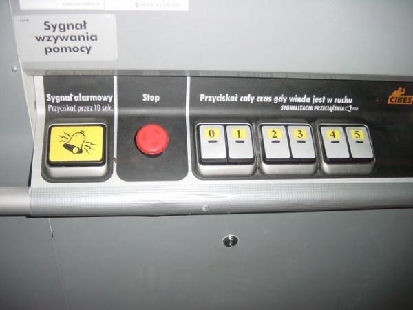 panel-AR